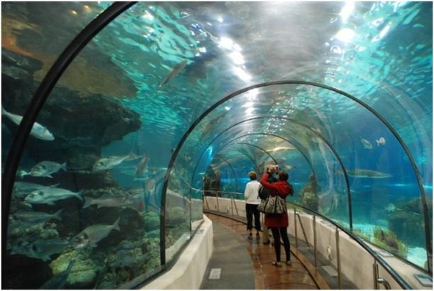 Pasillo del Aquarium